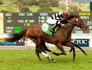 Champ Pegasus Retired to Legacy in California