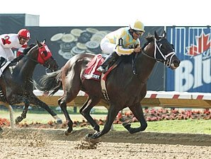 Casse Considers Two Oxley Colts for Haskell