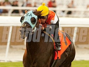 Dilemma wins the 2011 Daytona.