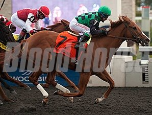 Cactus Kris wins the 2014 Ruling Angel Stakes.