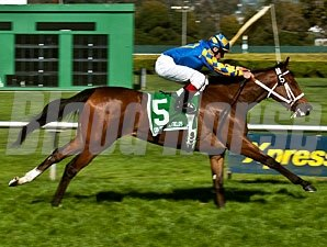 Stormy Lucy wins the 2012 Golden Poppy.