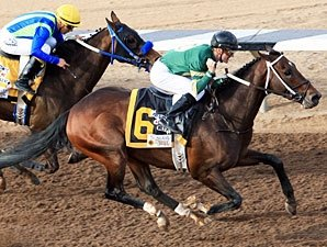 Daddy Nose Best Shows Grit in Sunland Derby