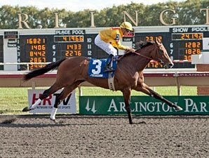 Pataky Kid, Gold Edge Breeze for Keeneland