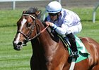 Al Khali Retired to Stud in New York