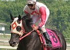 Remarkable Ben's Cat Defends Parx Dash Title