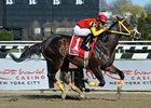 Trinniberg Cuts Back in Woody Stephens Stakes
