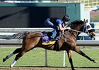 Class Included Gets Some Relief in Bayakoa