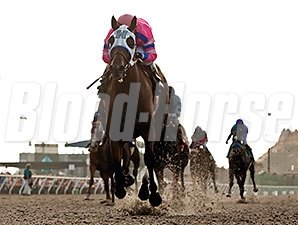 Broken Sword wins the Tranquility Lake Stakes.