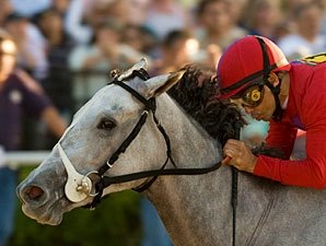 'Bound' for Stardom in Juvenile Fillies
