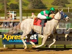 Zazu wins the 2011 Las Virgenes Stakes.