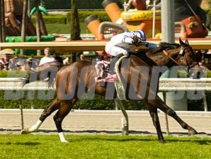Mr Gruff wins the 2009 San Simeon.