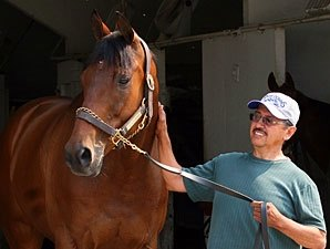 OH-Bred Catlaunch, a 40-Time Winner, Retired