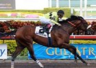 Quality Road Favored in Final KDFW Pool