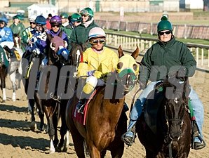Rapid Redux wins 21st in a row, 12/13/11 at Laurel.