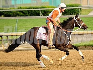 Believe You Can - Churchill Downs 05/03/2012.