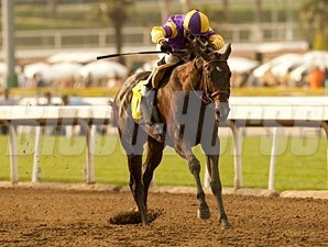 Premier Pegasus wins the 2011 San Felipe.