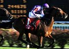 O'Brien Sends Out Two in Dubai Sheema Classic