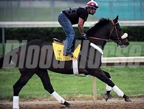 Papa Clem gallops at Churchill Downs on April 28