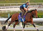 Manhattan Likely for Gio Ponti After Work