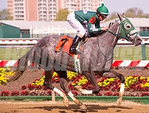 Daydreamin Gracie in the Shine Again Stakes.