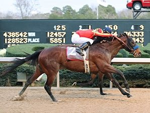 Lookin At Lucky Starts Year With Rebel Nod