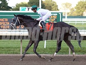 San Pablo wins the 2012 Iselin Stakes.