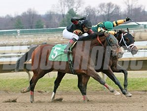 Heart Butte wins the 2011 Auld Lang Syne Stakes.