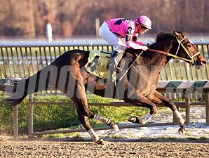 Regal Solo wins the 2009 Jennings Handicap.