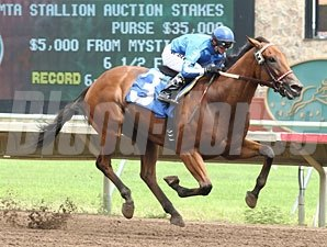 Heliskier in the MTA Stallion Auction Stakes.