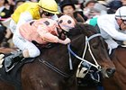 Black Caviar Wins 3rd Horse of the Year Title
