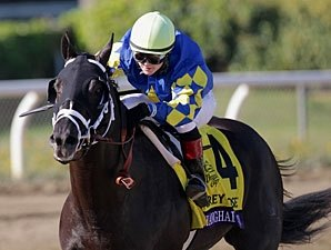 Shanghai Bobby Among Blue Grass Nominees