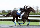 Breeders' Cup Hopefuls on Keeneland Worktab