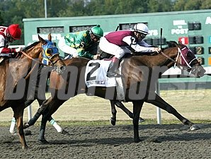 Eldaafer wins the 2010 Turfway Park Fall Championship.