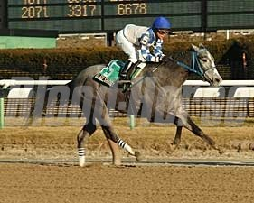 Go Go Shoot gets first stakes win in Aqueduct's Jimmy Winkfield.