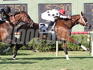 Go Tiger Jack wins the 2012 Barksdale Stakes.