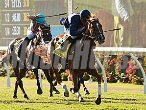 Personal Diary wins the 2014 Del Mar Oaks.