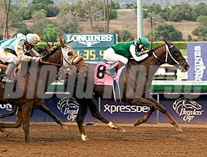 Regally Ready wins the 2014 Big Bear Stakes