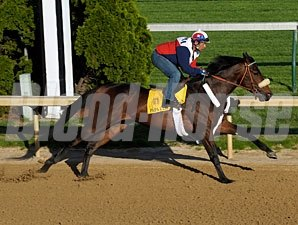 Papa Clem works at Churchill Downs, April 25, 2009.