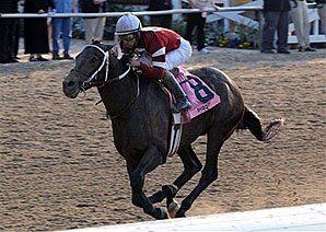 Ky. Derby Trail: A Rising Star
