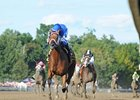 Questing Highlights Short Cotillion Field