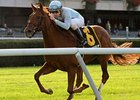 Belmont Turf Stakes Produce BC Hopefuls