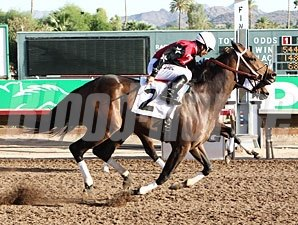 First Strike wins the 2012 Bienvenidos Stakes.
