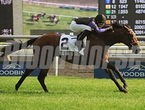 Big Band Sound wins the 2012 Play the King Stakes.