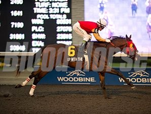 Up With the Birds wins the 2012 Coronation Futurity.