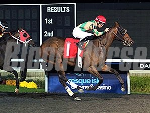 Jose Sea View wins the 2013 Fitz Dixon Jr. Memorial Juvenile Stakes.