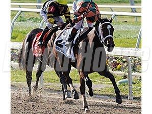 Proud Spell winning the Fair Grounds Oaks (gr. II)