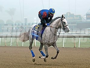 Tap It Rich preps for the Breeders' Cup.