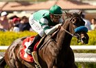 Lady of Shamrock Stands Out in Honeymoon
