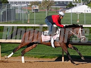 Dreaming of Julia - Churchill Downs, April 20, 2013.