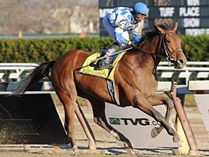 Buddy's Saint Turns Remsen Into a Romp